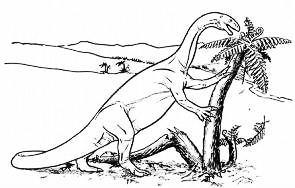 Plateosaurus-sketch-PHYS.ORG-AD2006